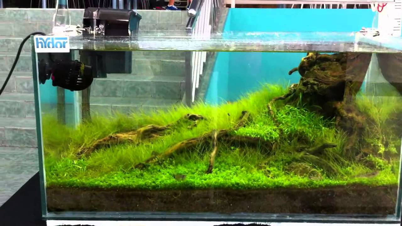 how to make aquarium pump