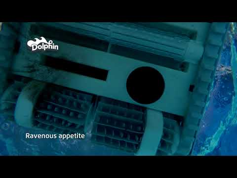 Dolphin Pool Cleaning - Product TVC NZ