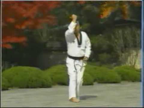 Các bài quyền Taekwondo... - Diễn Đàn Thư Viện Vovinam Việt Võ Đạo_10.flv