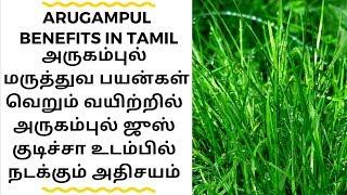 Arugampul Juice Benefits In Tamil / Arugampul Payangal / அருகம்புல் பயன்கள்
