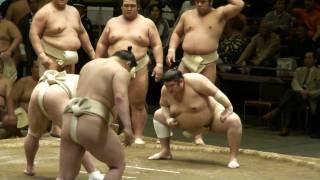 20100429総見_日馬富士稀勢の里他.