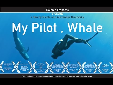 Dolphin Embassy.  My Pilot, Whale / Mon Pilote, Baleine (FR subtitles)