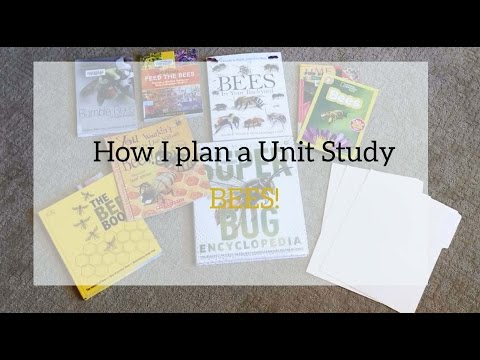 How I plan a Unit Study! {Bees} | Plan with me
