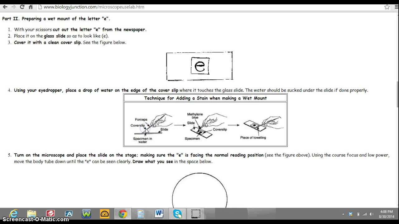 Microscope Letter e Lab YouTube – Microscope Lab Worksheet