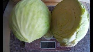 Засолка капусты на зиму/Самый простой рецепт