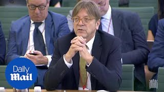 Verhofstadt: Brexit backstop to solve Irish border not acceptable - Daily Mail