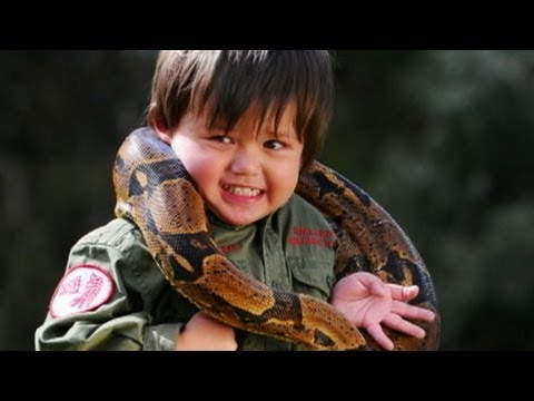 Young Animal Wrangler, 3, Ignites Online Controversy; Father Says he is Safe Wrangling Crocodiles