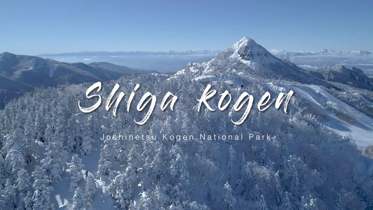 Ski Concierge in Shiga kogen