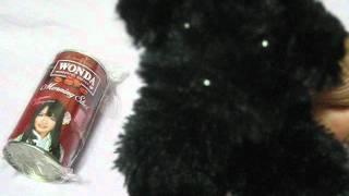 なっちゃん。WONDA×AKB48 ワンダフルルーレットキャンペーンのオリジナ...