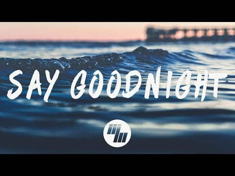 Aash Mehta - Say Goodnight (Lyrics / Lyric Video) ft. Capelle & Gavin Garris