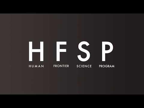 HFSP works!