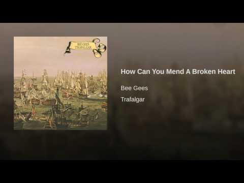 How Can You Mend Broken Heart