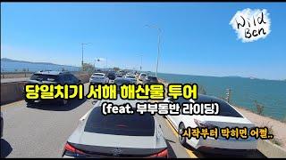 당일치기 서해 해산물투어를 떠나보자 (feat. 부부동…