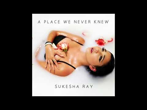 Sukesha Ray - A Place We Never Knew (Official Audio)