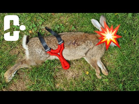 Catapult hunting Rabbit 8mm Steel