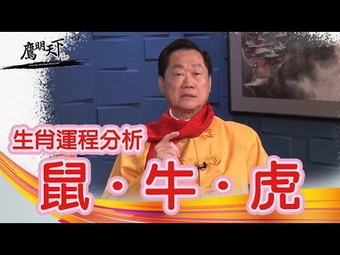 2020EP 3:  Fengshui Master Eagle Wong - Horoscope Rat, Ox, Tiger Sky Link TV