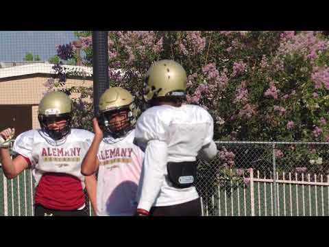 2017 Alemany football preview
