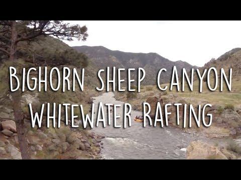 White Water Rafting Big Horn Sheep Canyon Doovi