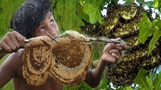 Primitive Technology : Find bees by Fire smoke -Eating bee honey delicious |traditional cuisine