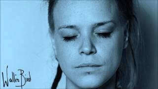 Who's Listening Now - Wallis Bird