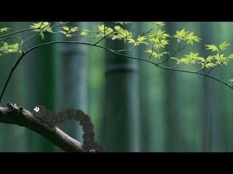 Анимация мимики в Adobe After Effects