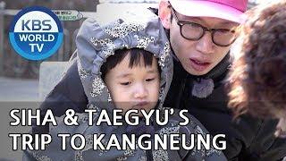 Taegyu