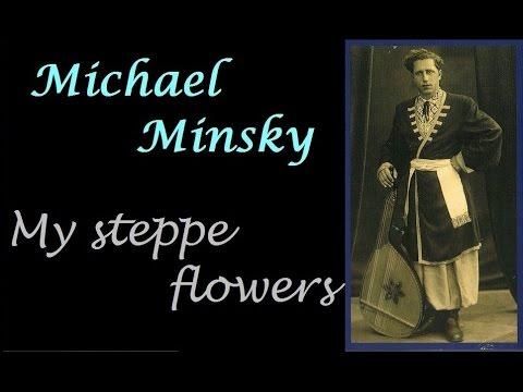Michael Minsky,  5/5.  My bellflowers, my steppe flowers