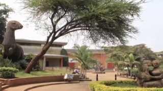 25 Nairobi National Meuseum & Snake Park