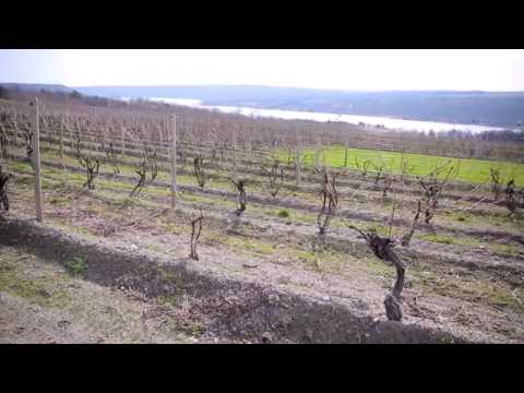 Finger Lakes Fun Facts: How well do you know the Finger Lakes?