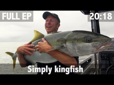 SIMPLY KINGFISH
