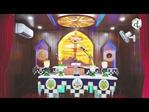 Holy Mass in Malayalam    October 25 Sunday    Syro Malabar    Catholic Focus