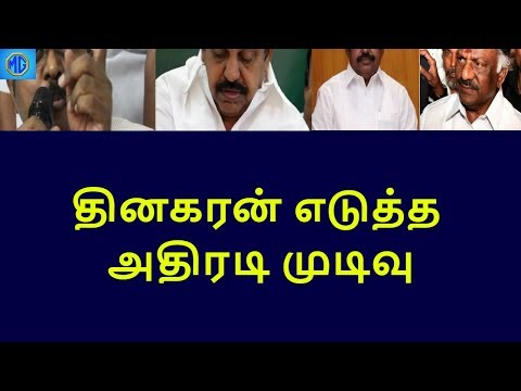 dinakaran shocking decision about rk nagar campaign|tamilnadu political news|live news tamil