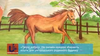 «Твори добро». На онлайн-аукціоні збирають кошти для ужгородського родинного будинку