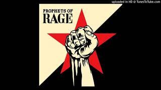 Prophets of rage - Smashit