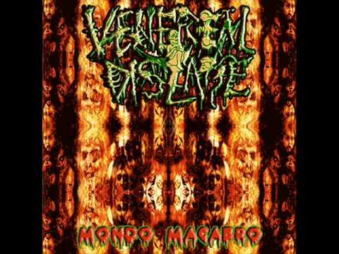 Venereal Disease - Kaixo (Delirium Tremens Cover)