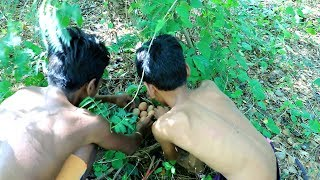 Chicken Eggs In The Forest   Cooking In Forest And Eating #07