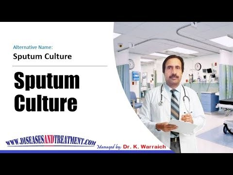 sputum culture what is the purpose of the test