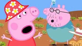 Peppa Pig Full Episodes 🇦🇺Earth Day- Peppa Pig's Visit in the Outback | Kids Videos