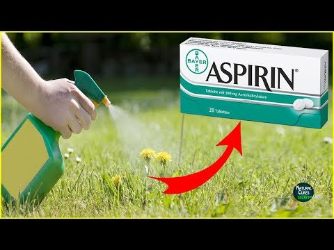 Top 5 Uses of ASPIRIN You Wish You Knew Before ! from YouTube · Duration:  2 minutes 23 seconds