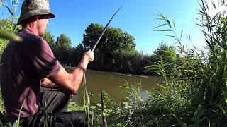 Ловля карася на реке летом без прикормки Рыбалка летом на поплавок