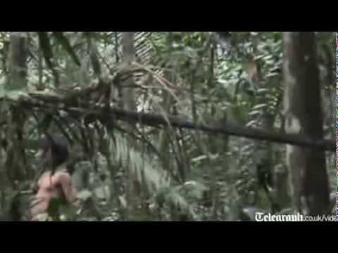 Công bố video hiếm về bộ lạc biệt lập trong rừng Amazon