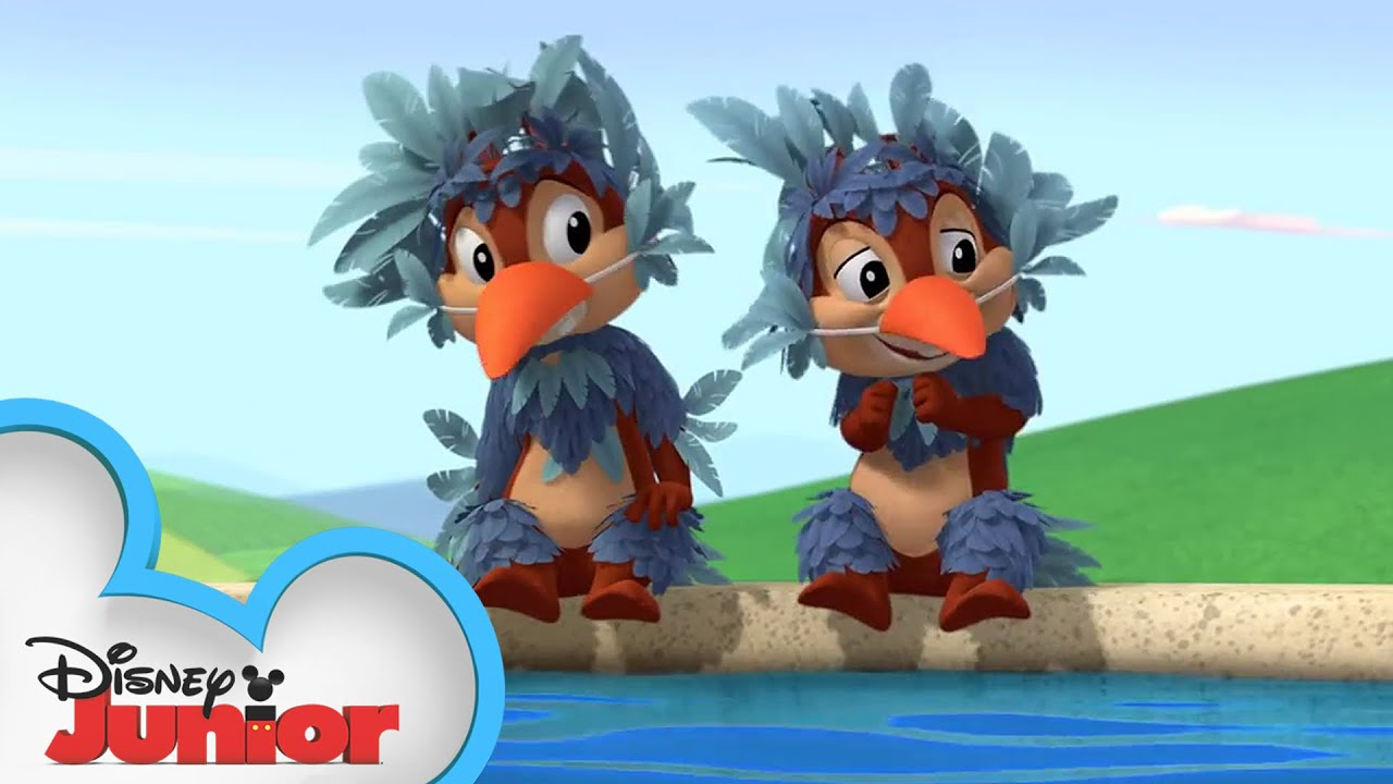Bird Bath and Beyond  Chip N Dales Nutty Tales  Disney
