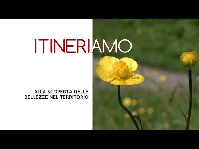 ITINERIAMO - Il cantiere del Baco