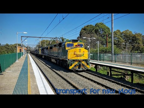 Transport for NSW Vlog No.1054 Cowan part 5