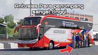 Line Perdana STJ Evolander Sca…