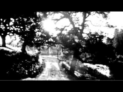 Download Neil Young - Cellar Door Trailer