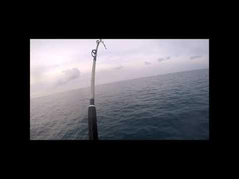 Quando a pesca  il gioco si fa duro