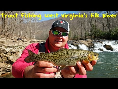 Trout Fishing West Virginia's Elk River
