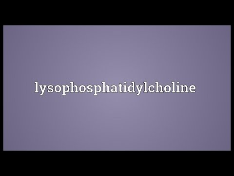 Lysophosphatidylinositol - Mashpedia - 10.9KB