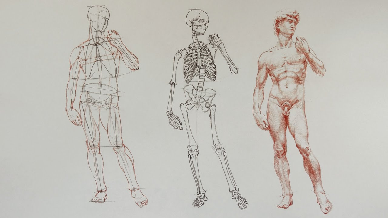 How to Draw a Man - Anatomy Master Class - YouTube